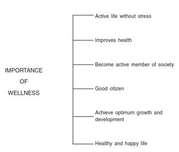 Physical Fitness Wellness and Lifestyle class 11 Notes Physical