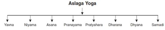 Yoga class 11 Notes Physical Education